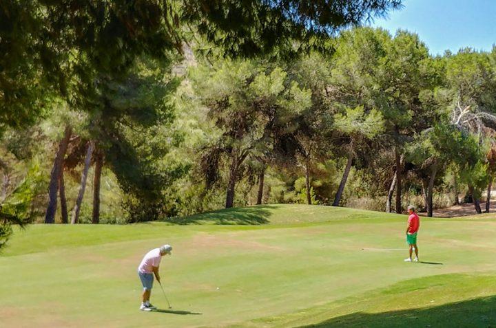 La Alineación en el Golpe de Golf