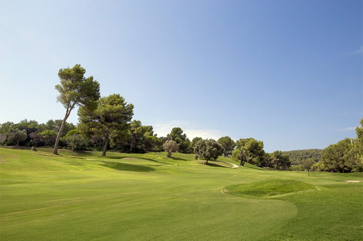 Current condition of the Golf Ibiza courses